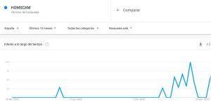 HOMSCAM-estadisticas-de-compra-google-trends-2020