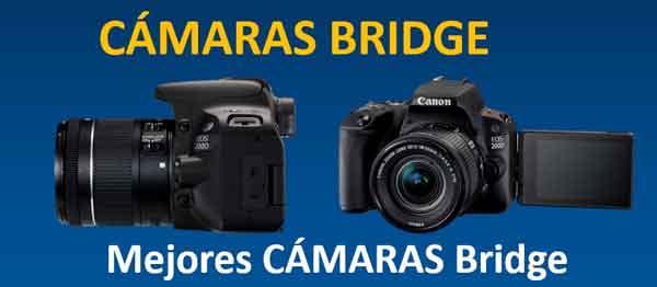 camaras-bridge