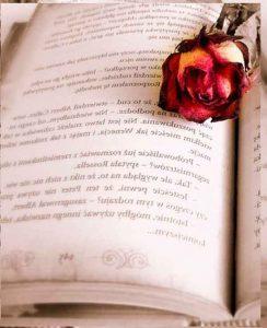 ventajas-del-libro-electronico
